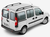 Photos of Fiat Doblò BR-spec (223) 2009