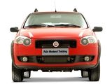 Images of Fiat Palio Weekend Trekking (178) 2008–12
