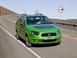 Images of Fiat Palio Weekend Eletrico (178) 2009