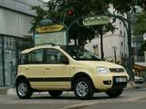 Fiat Panda 4x4 Climbing (169) 2004 pictures