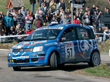Fiat Panda Rally (169) 2004–07 pictures