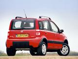 Fiat Panda 4x4 Climbing UK-spec (169) 2005–09 pictures