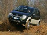 Fiat Panda 4x4 Cross (169) 2006–12 pictures