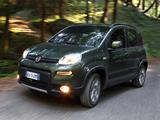 Fiat Panda 4x4 (319) 2012 images