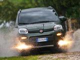 Fiat Panda 4x4 (319) 2012 photos