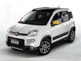 Fiat Panda 4x4 Antartica (319) 2013 images