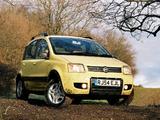Images of Fiat Panda 4x4 Climbing UK-spec (169) 2005–09