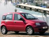Images of Fiat Panda ZA-spec (169) 2010–12
