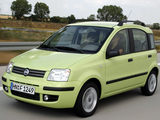 Photos of Fiat Panda (169) 2003–09