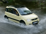 Pictures of Fiat Panda 4x4 Climbing (169) 2004