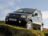 Pictures of Fiat Panda 4x4 Climbing UK-spec (169) 2009–10
