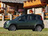 Pictures of Fiat Panda 4x4 (319) 2012
