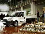 Fiat Pratico (263) 2011 photos