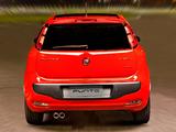 Fiat Punto Sporting BR-spec (310) 2012 photos