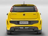 Fiat Punto T-Jet BR-spec (310) 2012 pictures