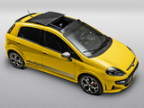 Images of Fiat Punto T-Jet BR-spec (310) 2012