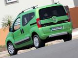 Fiat Qubo Trekking (225) 2011 images