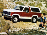Ford Bronco 1980–86 pictures