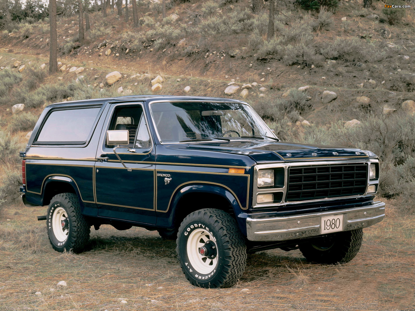 Images of ford bronco 1980 86 1600 x 1200