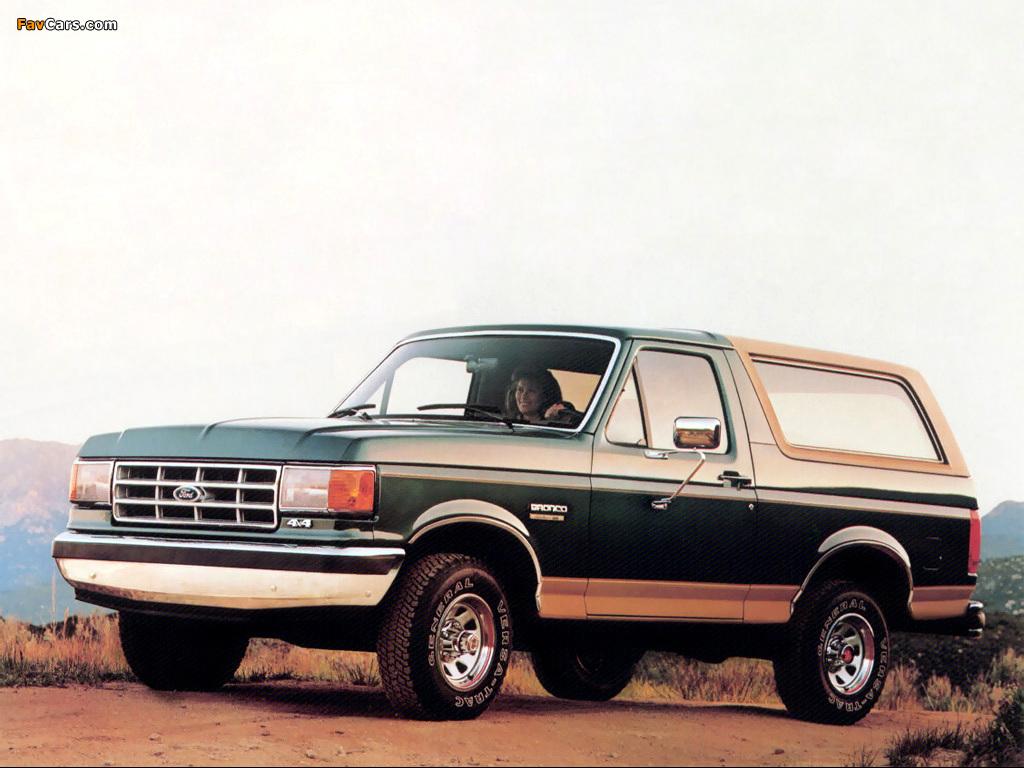 Photos of Ford Bronco 1987–91 (1024 x 768)