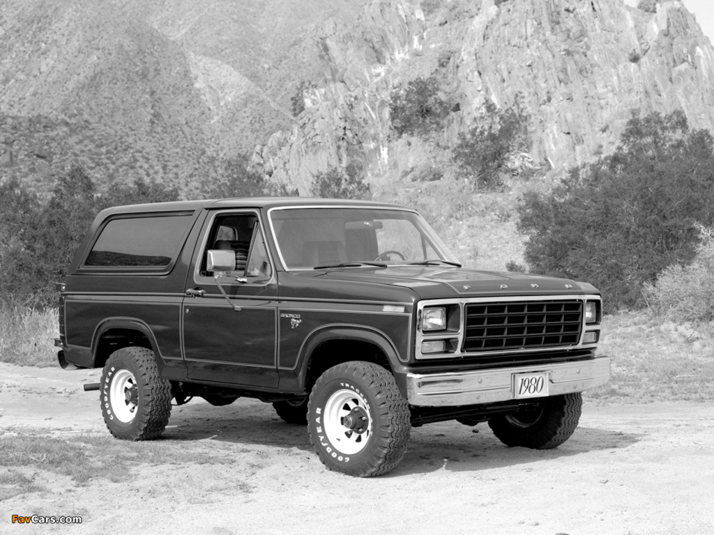 Pictures of Ford Bronco 1980–86 (1024 x 768)