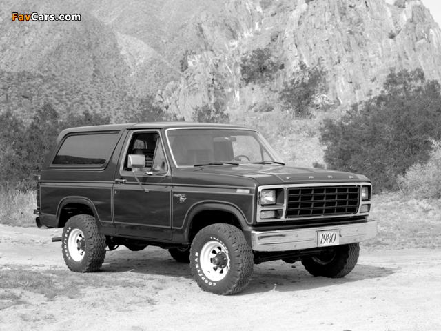 Pictures of Ford Bronco 1980–86 (640 x 480)