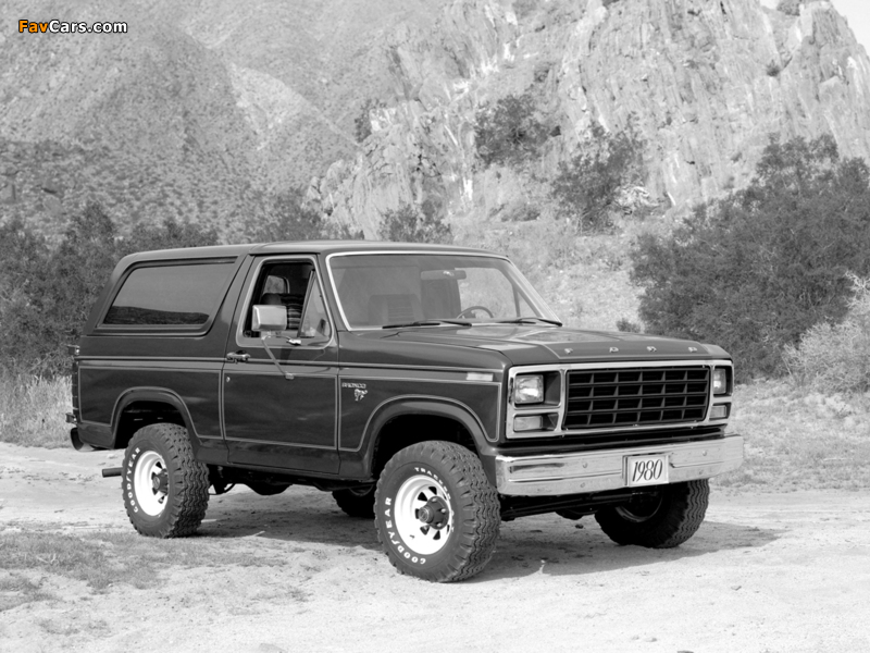 Pictures of Ford Bronco 1980–86 (800 x 600)