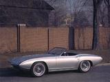 Images of Ford XP Bordinat Cobra Concept Car 1965