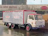 Ford D500 6x4 1965–76 photos