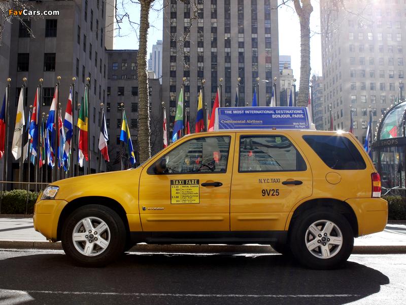 Ford Escape Hybrid Taxi 2005–07 photos (800 x 600)