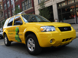 Ford Escape Hybrid Taxi 2005–07 pictures