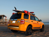 Ford Escape Hybrid Lifeguard 2008–12 images