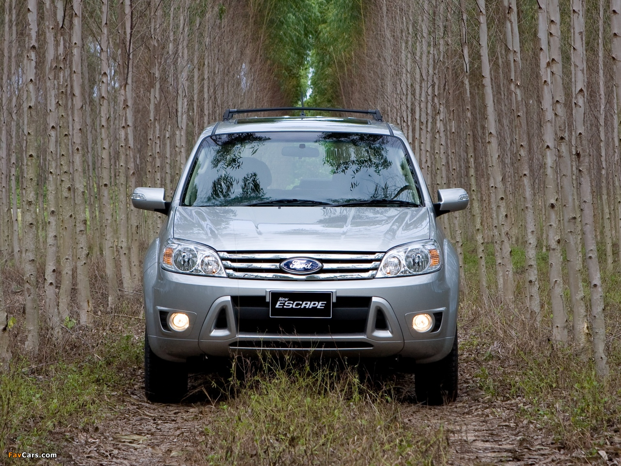 Photos of Ford Escape TH-spec (ZD) 2008–10 (1280 x 960)