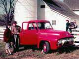 Ford F-100 1954 pictures