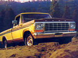 Ford F-100 1979 photos