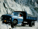 Ford F-11000 1981–85 images
