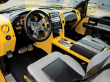Ford F-150 Tonka by DeBerti Designs 2004 pictures