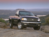 Photos of Ford F-150 Regular Cab 1996–2003