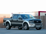 Pictures of Xenon Ford F-150 SuperCrew 2004–08