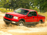 Pictures of Ford F-150 FX4 2004–05