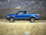 Pictures of Ford F-150 FX4 2008–11