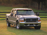 Ford F-250 Super Duty Platinum Edition 2001 wallpapers