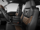 Ford F-250 Super Duty Crew Cab Harley-Davidson 2009 wallpapers