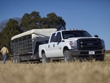 Images of Ford F-350 Super Duty Crew Cab 2010