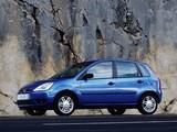 Photos of Ford Fiesta 5-door 2002–05
