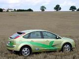 Ford Focus FFV 2005–08 photos