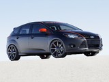 Ford Focus 5-door by 3dCarbon 2010 pictures