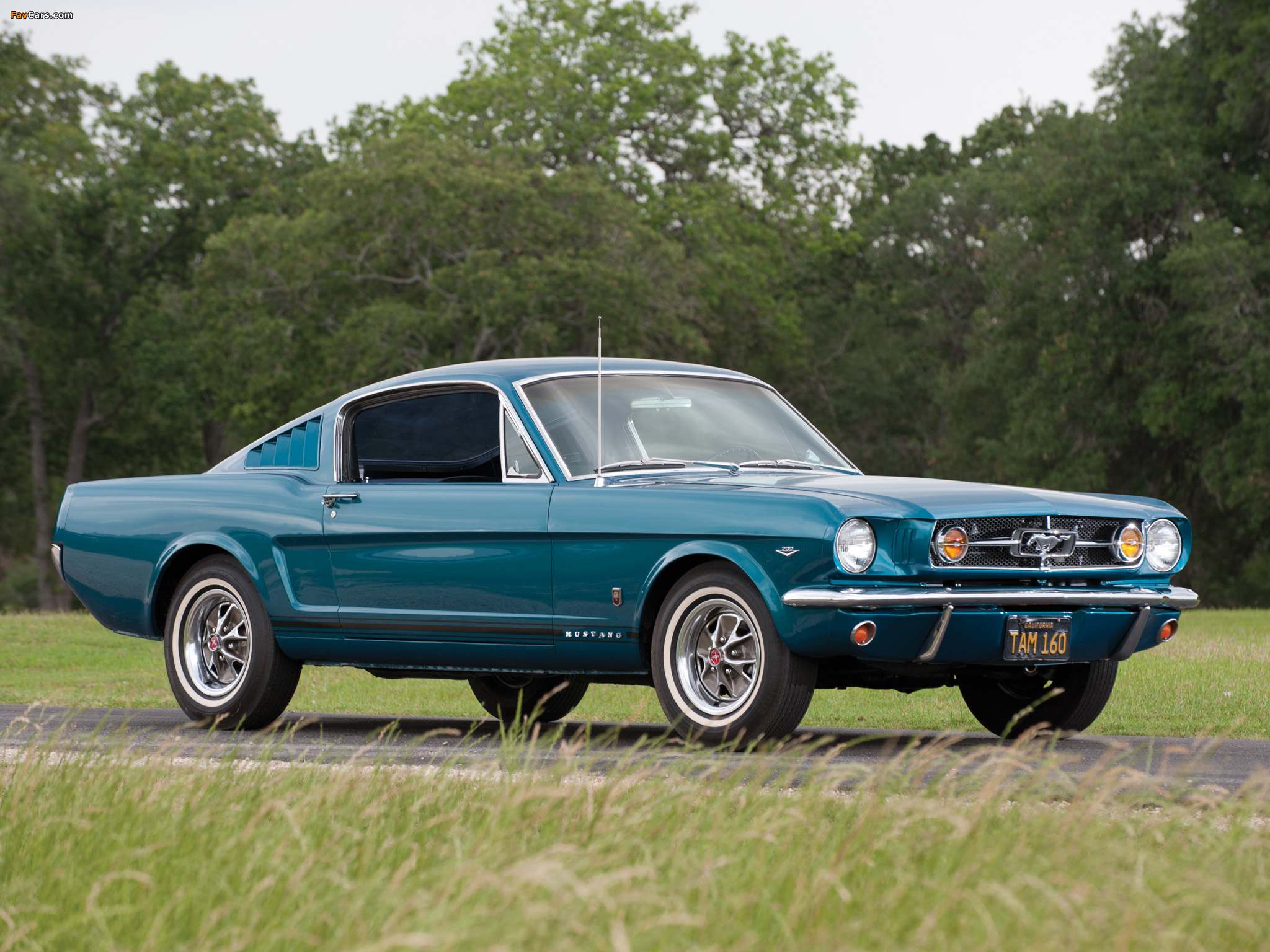 Mustang GT Fastback 1965 images (2048 x 1536)