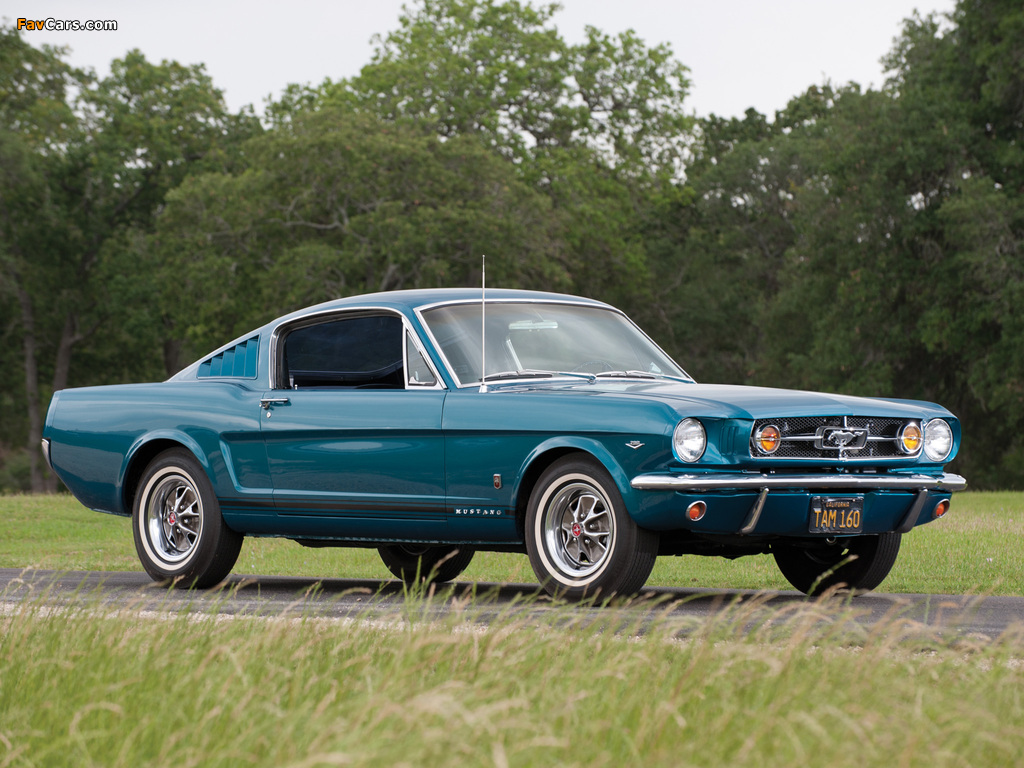 Mustang GT Fastback 1965 images (1024 x 768)