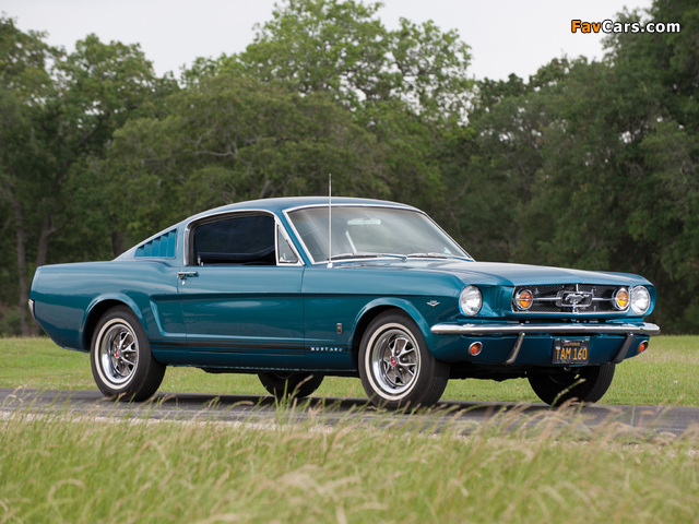 Mustang GT Fastback 1965 images (640 x 480)